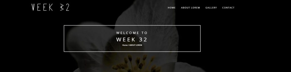 Week 32 -Learning Activity – Building a Mobile-Friendly Website